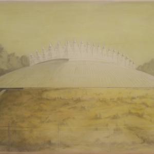 Cím nélkül 4000(Tüskecsarnok), 70x90 cm, 2014