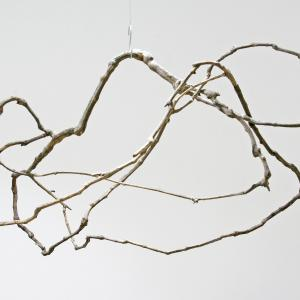 Peter Matyasi: Endless vine, cut vine, glue, 80×120×60cm, 2018, Herbarium exhibition