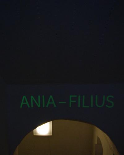 ANIA-FILIUS, Óbudai Társaskör Galéria, Bp. 2016