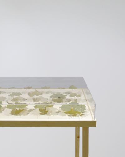 Mátyási Péter: Artist In Residence 1., levél, plexi, faállvány, 80×115×60cm, 2018